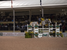 Rose Hill Farm Fidelity Jump